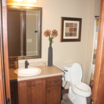 Bathroom on Lower Level (The Silvercrest)